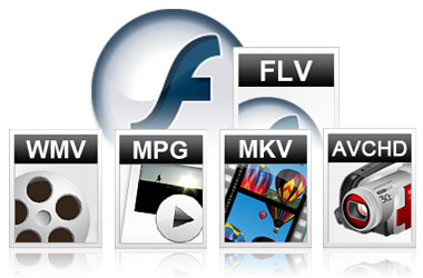 what is flv